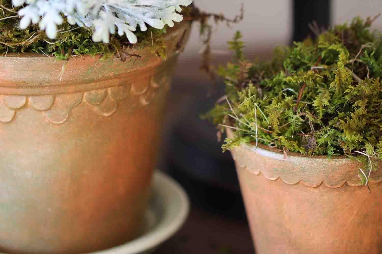 aging clay pots